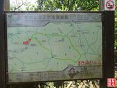 新北市.平溪區.石硿子瀑布:[yuhyng] 平溪石硿子古道尋幽 (84).jpg