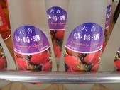 苗栗縣.大湖鄉.草莓文化館 (大湖酒莊):[snoopy7219] DSC05650.JPG