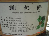高雄市.左營區.高雄左營三角公園:[liupangyen] 097年01月21日南左營三角公園_44.JPG
