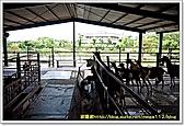 宜蘭縣.冬山鄉.宜農牧羊場:[mega112] 158216460_l.jpg