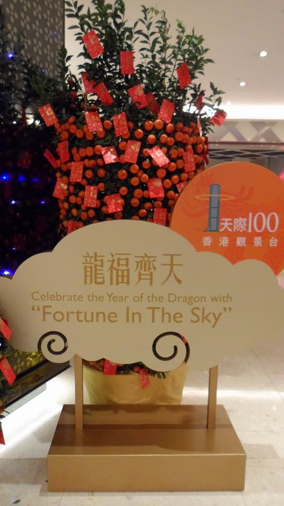 九龍.天際100香港觀景台 Sky100:[jazzyang] SAM_0845.JPG