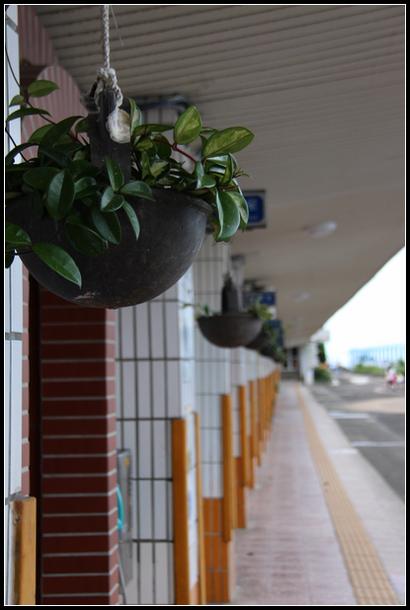 新北市.瑞芳區.濓洞國小:[water.afu] 濓洞國小