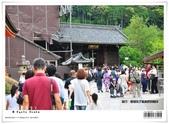 京都府.清水寺:[bibitsai] nEO_IMG_20120623td 780.jpg