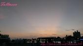 高雄市.苓雅區.光榮碼頭 (黃色小鴨):[shiauwen116] 霍夫曼的黃色小鴨 (41)