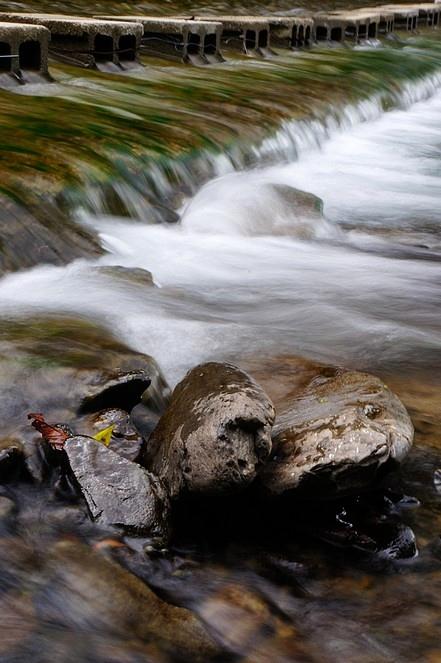 屏東縣.獅子鄉.雙流國家森林遊樂區:[ca062] DSC06955.jpg
