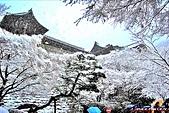 京都府.清水寺:[chiefalex] PhotoCap_DSC_0598.jpg