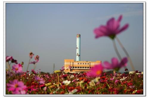 台中縣.后里鄉.花田拼布公園:[jast_lien]5.jpg