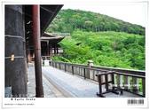 京都府.清水寺:[bibitsai] nEO_IMG_20120623td 787.jpg