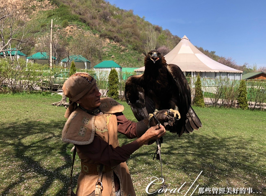 哈薩克全區.Sunkar獵鷹保育訓練中心:[coral4401] Sunkar獵鷹保育訓練中心