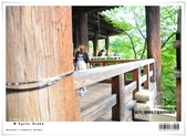 京都府.清水寺:[bibitsai] nEO_IMG_20120623td 795.jpg
