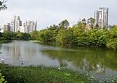 台北市.大安區.大安森林公園:[aec810909] DSCF8514(001)(001).jpg