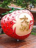 苗栗縣.大湖鄉.草莓文化館 (大湖酒莊):[shellon] 大家都要照的草莓~來一張吧