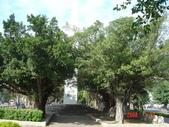 高雄市.左營區.高雄左營三角公園:[liupangyen] 097年01月21日南左營三角公園_13.JPG