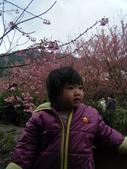 台中縣.和平鄉.武陵森林遊樂區:[jazzyang] DSCF3893.JPG