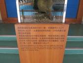 金門縣.金寧鄉.乳山遊客中心:[pandacarol] 照片 264.jpg