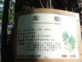 高雄市.左營區.高雄左營三角公園:[liupangyen] 097年01月21日南左營三角公園_21.JPG