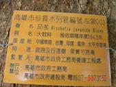 高雄市.左營區.高雄左營三角公園:[liupangyen] 097年01月21日南左營三角公園_23.JPG