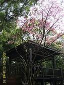 桃園市.桃園區.虎頭山公園:[avan_traveling] PIC_0287.JPG