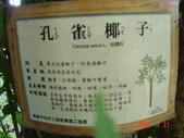 高雄市.左營區.高雄左營三角公園:[liupangyen] 097年01月21日南左營三角公園_30.JPG
