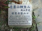 台北市.內湖區.圓覺寺親山步道:[anny1958] DSC00638.JPG