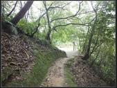 台北市.南港區.麗山橋口親山步道:[fuli19610302]  麗山橋步道  (8).jpg