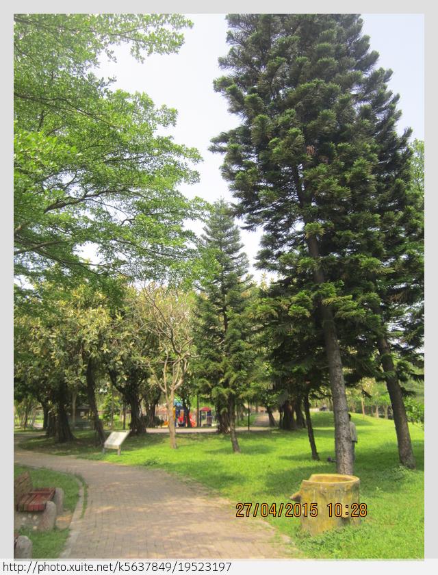新北市.樹林區.樹林區水源公園:[k5637849] 樹林區水源公園