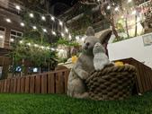 台中市.東區.魔法兔兔 MF22 - 寵物兔友善餐廳:[mf22.love22] IMG_20191130_210701.jpg