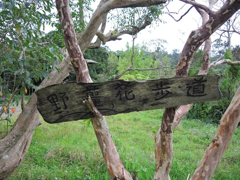 屏東縣.牡丹鄉.東源森林遊樂區:[sabrina0330] DSCN6120.JPG