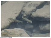 新北市.汐止區.姜子寮步道(絕壁、瀑布):[fuli19610302] 姜子寮步道(絕壁、瀑布)