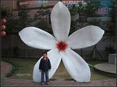 苗栗縣.大湖鄉.草莓文化館 (大湖酒莊):[fuli19610302] 採梅記 (1).jpg