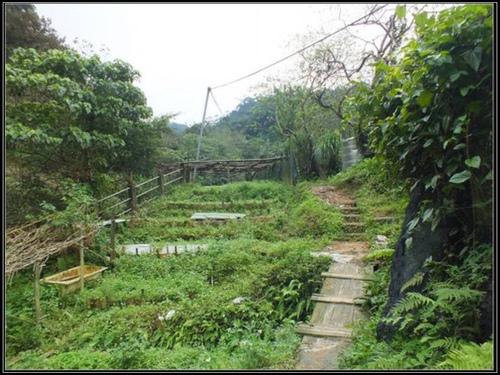 台北市.信義區.豹山溪自然步道:[fuli19610302] 豹山溪自然步道