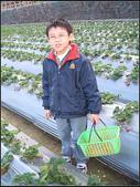 苗栗縣.大湖鄉.草莓文化館 (大湖酒莊):[fuli19610302] 採梅記 (11).jpg