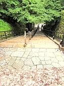 京都府.清水寺:[pppp038] 1084870265.jpg