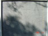 高雄市.左營區.高雄左營三角公園:[liupangyen] 097年01月21日南左營三角公園_15.JPG