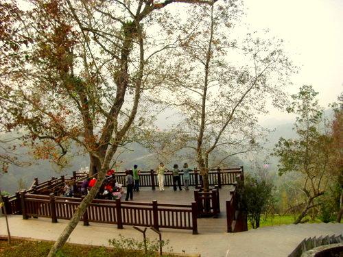 台南市.白河區.紅葉公園:[pppp038] ap_F23_20091229105923842.jpg
