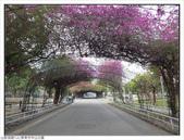 屏東縣.屏東市.中山公園:[fuli19610302] 中山公園 (6).jpg