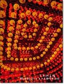 台中市.烏日區.2015台灣燈會  (烏日高鐵特定區燈區):[eva19830621] 2015台灣燈會  (烏日高鐵特定區燈區)