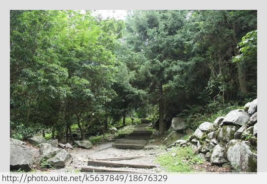 台中市.和平區.八仙山森林遊樂區:[k5637849] 八仙山森林遊樂區