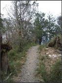 宜蘭縣.大同鄉.望洋山步道:[fuli19610302] 望洋山步道 (7).jpg