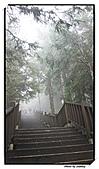 宜蘭縣.大同鄉.太平山森林遊樂區:[stanley_usc] DSC00707.jpg