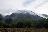 嘉義縣.阿里山鄉.茶山部落 (珈雅瑪部落):[lsg2006] 茶山部落(珈雅瑪部落)