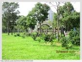 台北市.大安區.大安森林公園:[k5637849]  大安森林公園