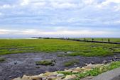 台中市.清水區.高美濕地:[lsg2006] 高美濕地