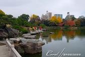 東京市.清澄庭園:[coral4401] 清澄庭園