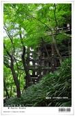 京都府.清水寺:[bibitsai] nEO_IMG_20120623td 873.jpg