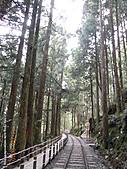 宜蘭縣.大同鄉.太平山森林遊樂區:[jennifer99] DSCN4497.JPG