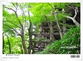 京都府.清水寺:[bibitsai] nEO_IMG_20120623td 874.jpg