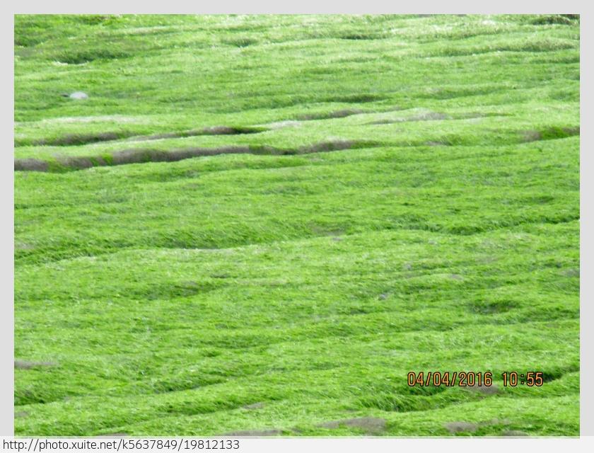 新北市.石門區.老梅石槽:[k5637849] 老梅石槽