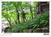 京都府.清水寺:[bibitsai] nEO_IMG_20120623td 875.jpg