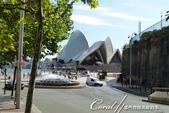 澳洲首都特區.雪梨歌劇院:[coral4401] 雪梨歌劇院